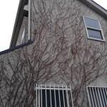 世田谷区外壁からの雨漏り修理サイディング施工法