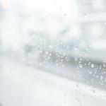 結露と雨漏りの見分け方(杉並区)