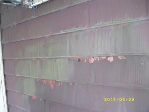 梅雨前 屋根調査 雨漏り対策