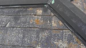 屋根改修 屋根メンテナンス 雨漏り