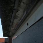 マンションパラペット部の雨漏り修理(杉並区)