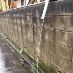 屋根修理[今から備えたい台風による雨漏り]>新宿区