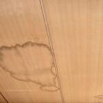 港区で長寿住宅のための雨漏り修理